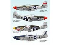 North American P-51 Mustang Part 2