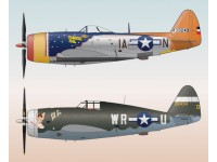 P-47 Best Selection Part 1