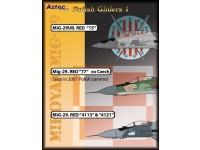 Polish Gliders Part 1