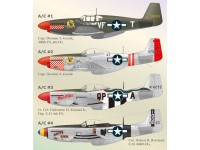 North American P-51 Part 4